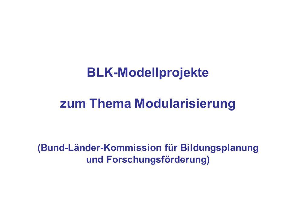 BLK-Modellprojekte zum Thema Modularisierung (Bund-Länder-Kommission für Bildungsplanung und Forschungsförderung)