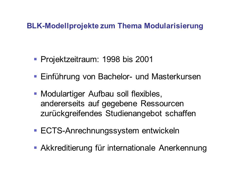 BLK-Modellprojekte zum Thema Modularisierung