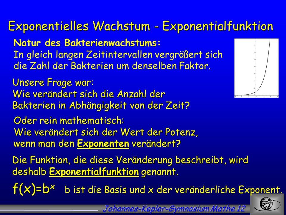 Exponentielles Wachstum - Exponentialfunktion