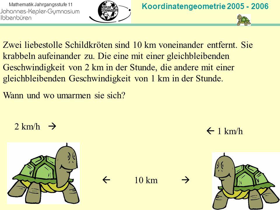 Zwei liebestolle Schildkröten sind 10 km voneinander entfernt