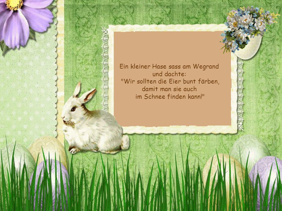 Ein kleiner Hase sass am Wegrand und dachte: Wir sollten die Eier bunt färben, damit man sie auch im Schnee finden kann!