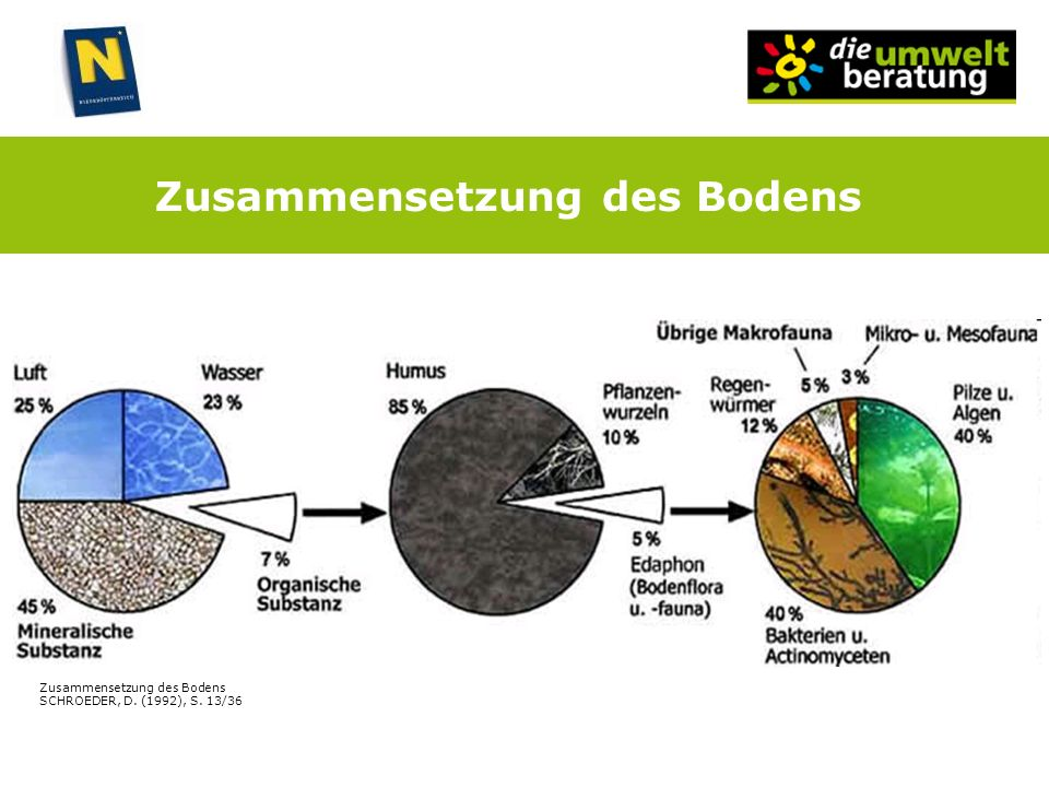 Zusammensetzung des Bodens