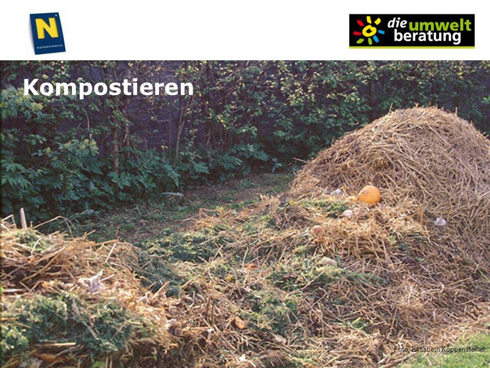 Kompostieren Foto: Elisabeth Koppensteiner