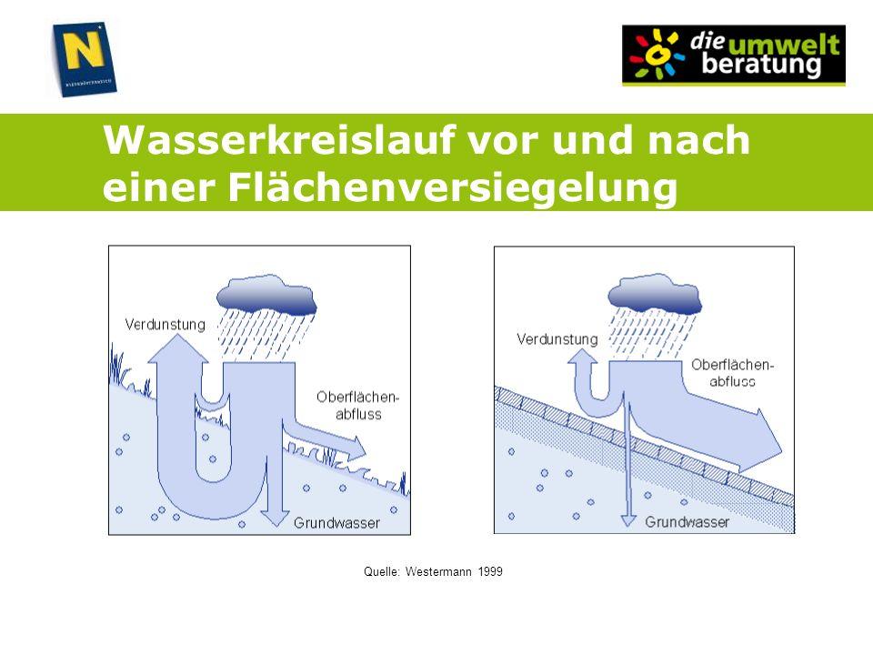 Wasserkreislauf vor und nach einer Flächenversiegelung