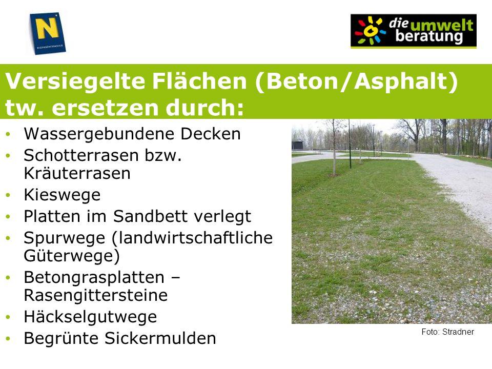 Versiegelte Flächen (Beton/Asphalt) tw. ersetzen durch: