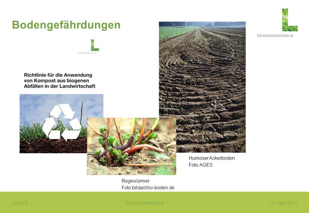 Bodengefährdungen Humoser Ackerboden Foto AGES Regewürmer