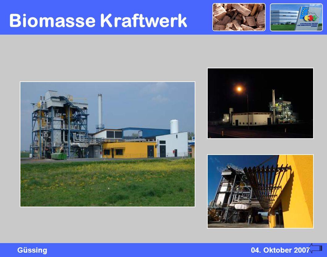 Biomasse Kraftwerk