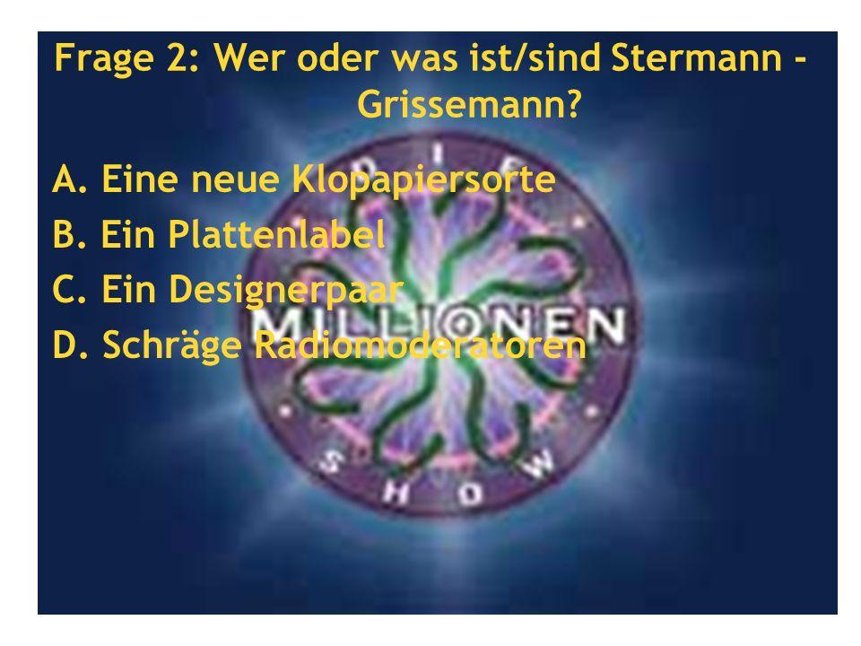 Frage 2: Wer oder was ist/sind Stermann - Grissemann