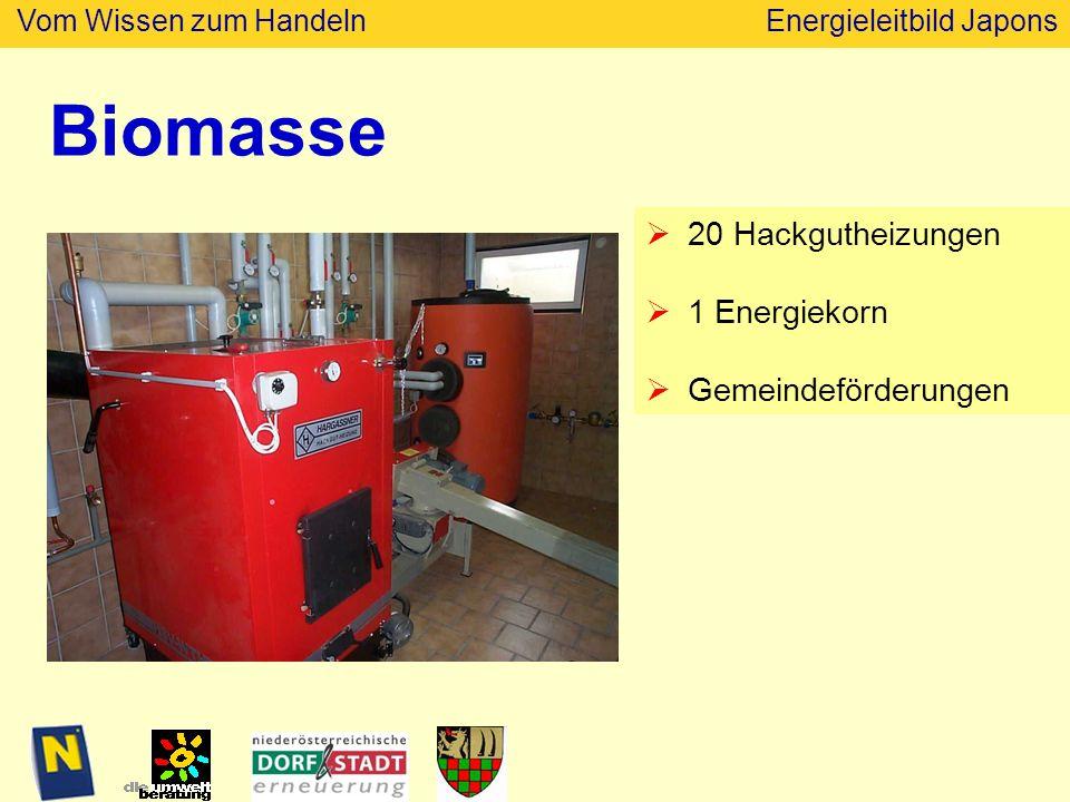 Biomasse 20 Hackgutheizungen 1 Energiekorn Gemeindeförderungen