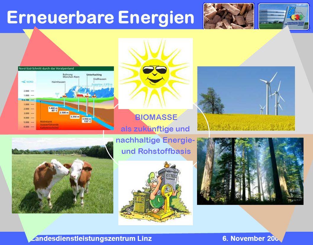 Erneuerbare Energien BIOMASSE als zukünftige und nachhaltige Energie-