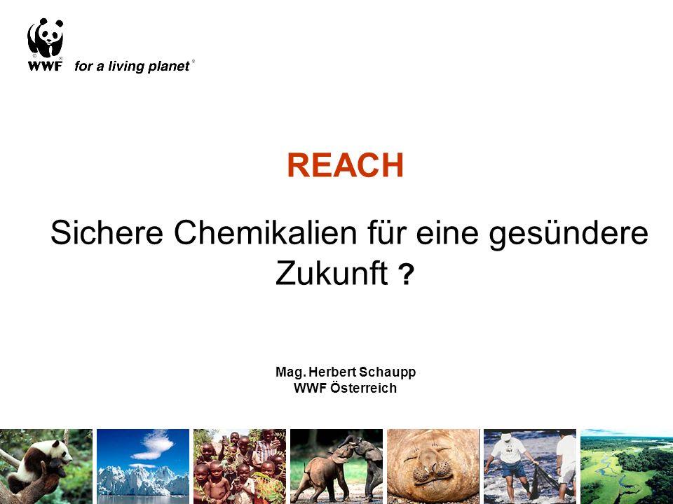 REACH Sichere Chemikalien für eine gesündere Zukunft. Mag