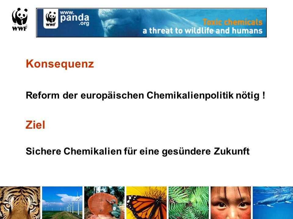 Konsequenz Reform der europäischen Chemikalienpolitik nötig ! Ziel