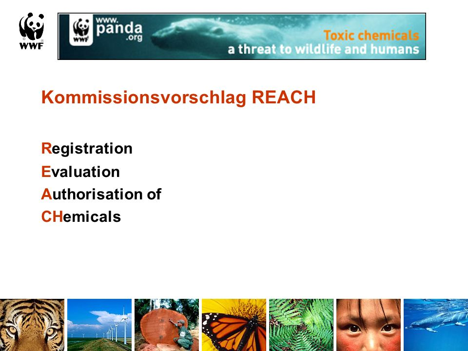 Registration Kommissionsvorschlag REACH Evaluation Authorisation of