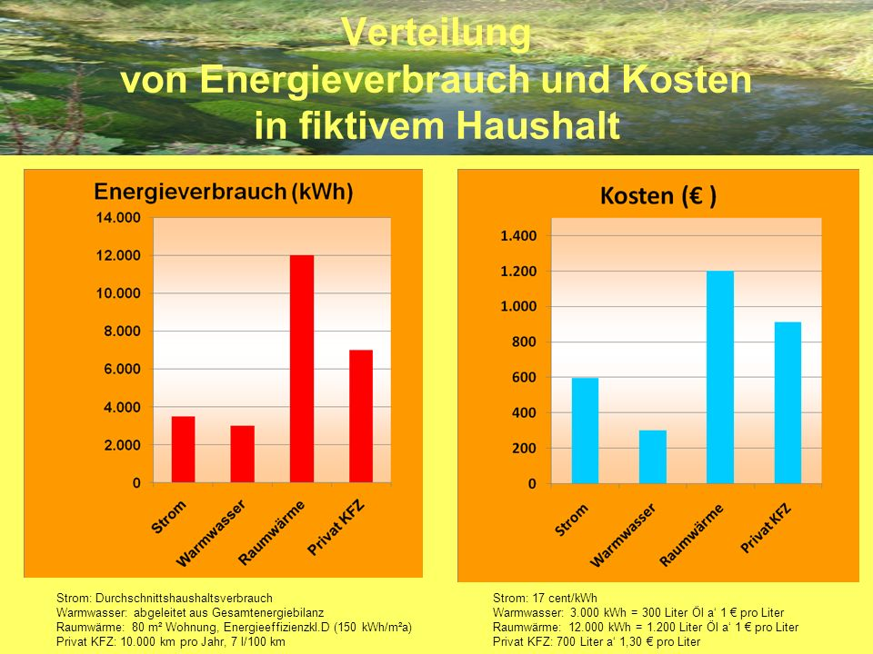 Verteilung von Energieverbrauch und Kosten in fiktivem Haushalt