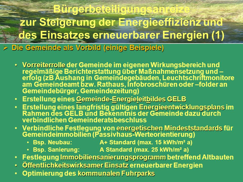 Bürgerbeteiligungsanreize zur Steigerung der Energieeffizienz und des Einsatzes erneuerbarer Energien (1)