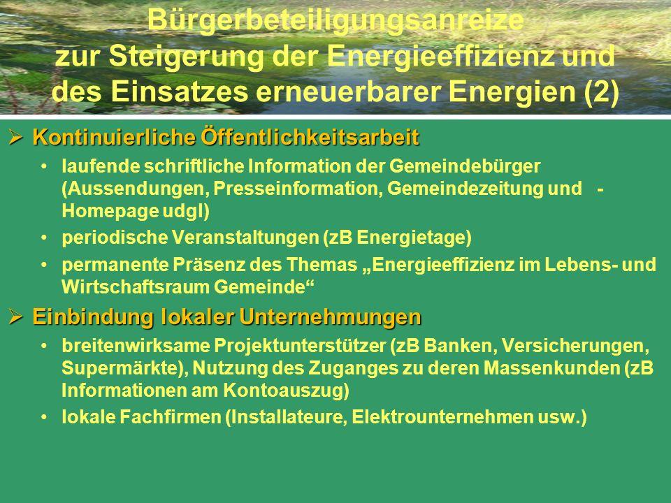 Bürgerbeteiligungsanreize zur Steigerung der Energieeffizienz und des Einsatzes erneuerbarer Energien (2)