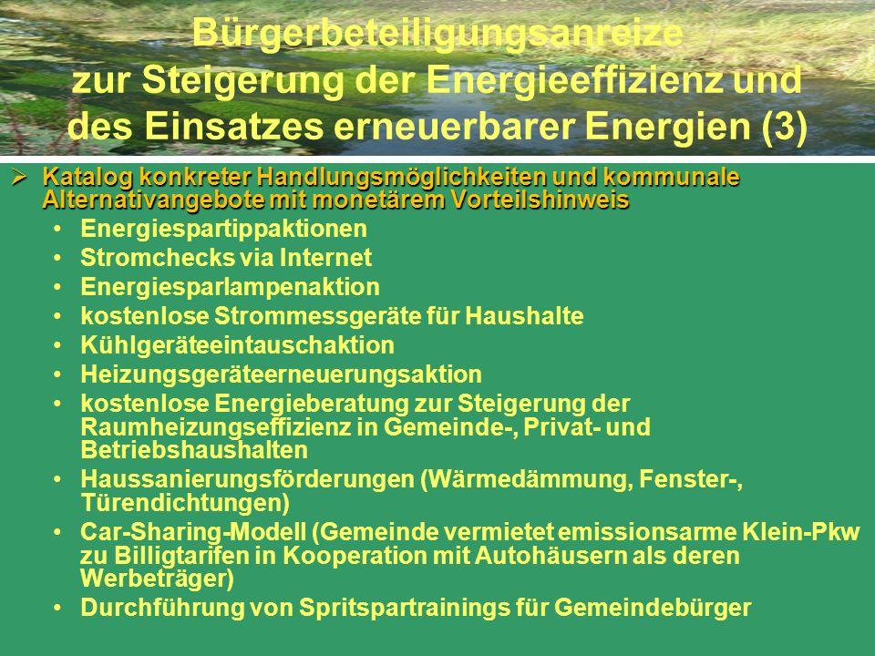 Bürgerbeteiligungsanreize zur Steigerung der Energieeffizienz und des Einsatzes erneuerbarer Energien (3)