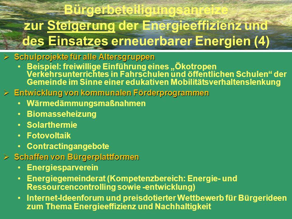 Bürgerbeteiligungsanreize zur Steigerung der Energieeffizienz und des Einsatzes erneuerbarer Energien (4)
