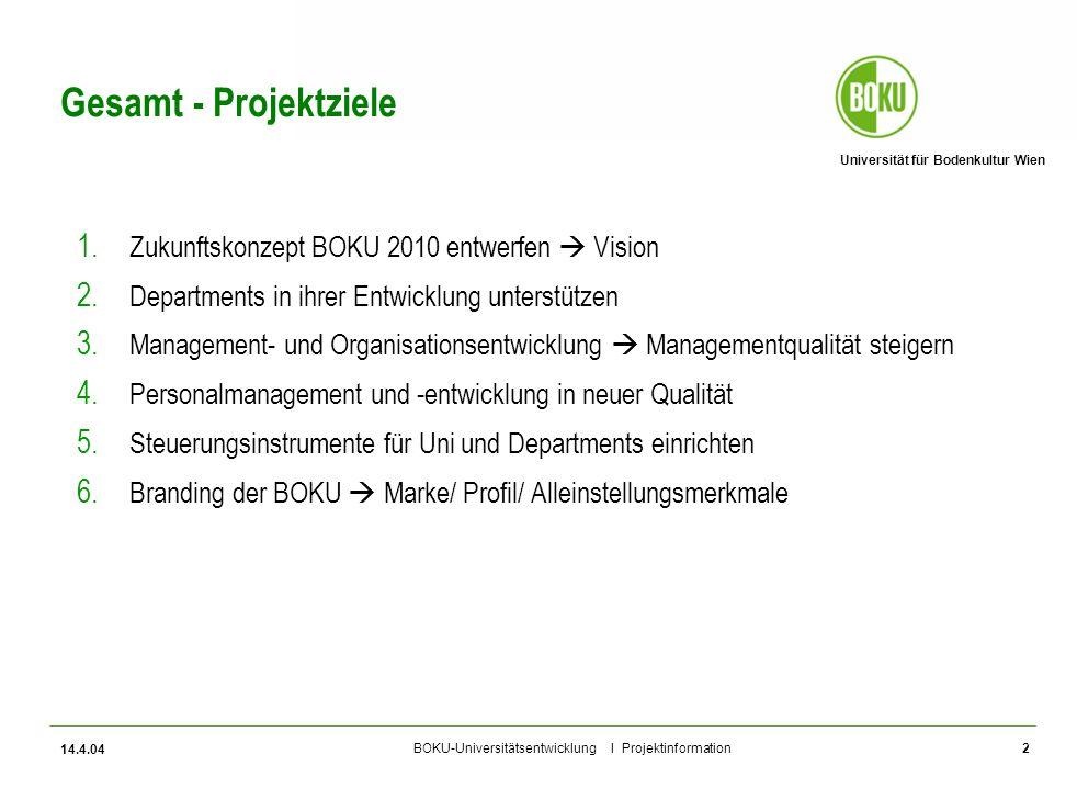 Gesamt - Projektziele Zukunftskonzept BOKU 2010 entwerfen  Vision