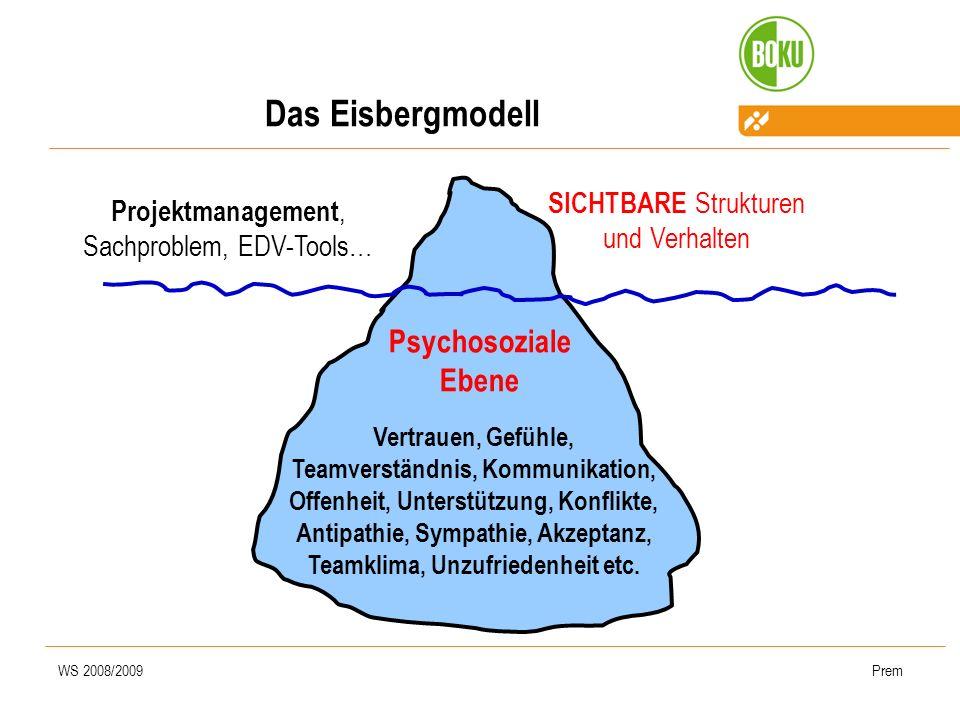 Das Eisbergmodell Psychosoziale Ebene