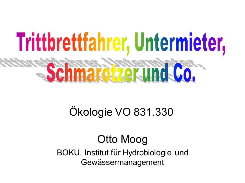 Otto Moog BOKU, Institut für Hydrobiologie und Gewässermanagement