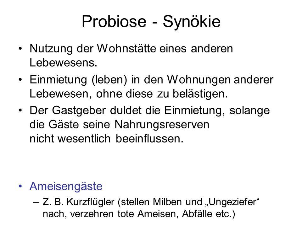 Probiose - Synökie Nutzung der Wohnstätte eines anderen Lebewesens.