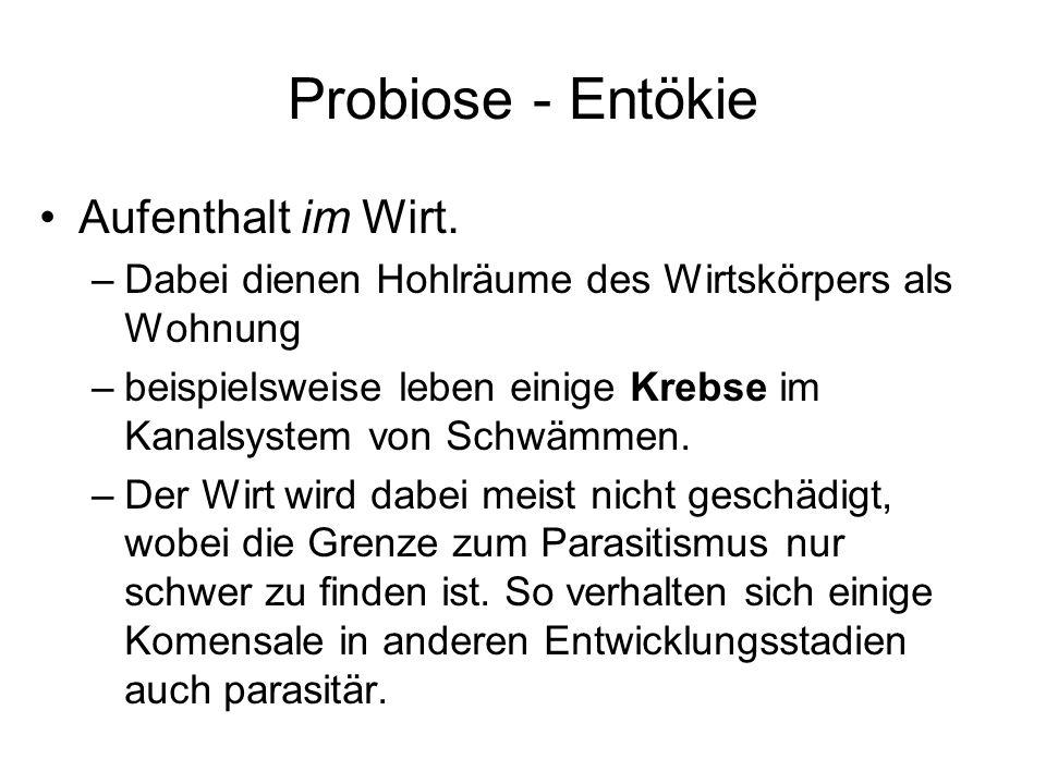 Probiose - Entökie Aufenthalt im Wirt.