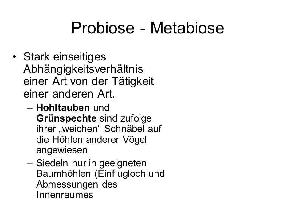 Probiose - MetabioseStark einseitiges Abhängigkeitsverhältnis einer Art von der Tätigkeit einer anderen Art.