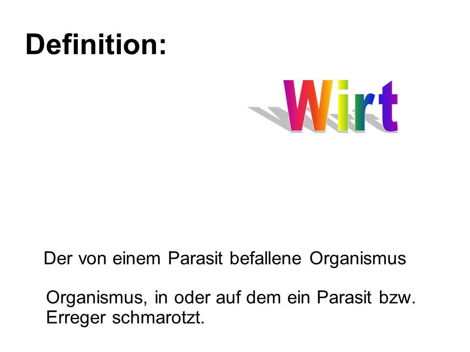 Definition: Wirt.