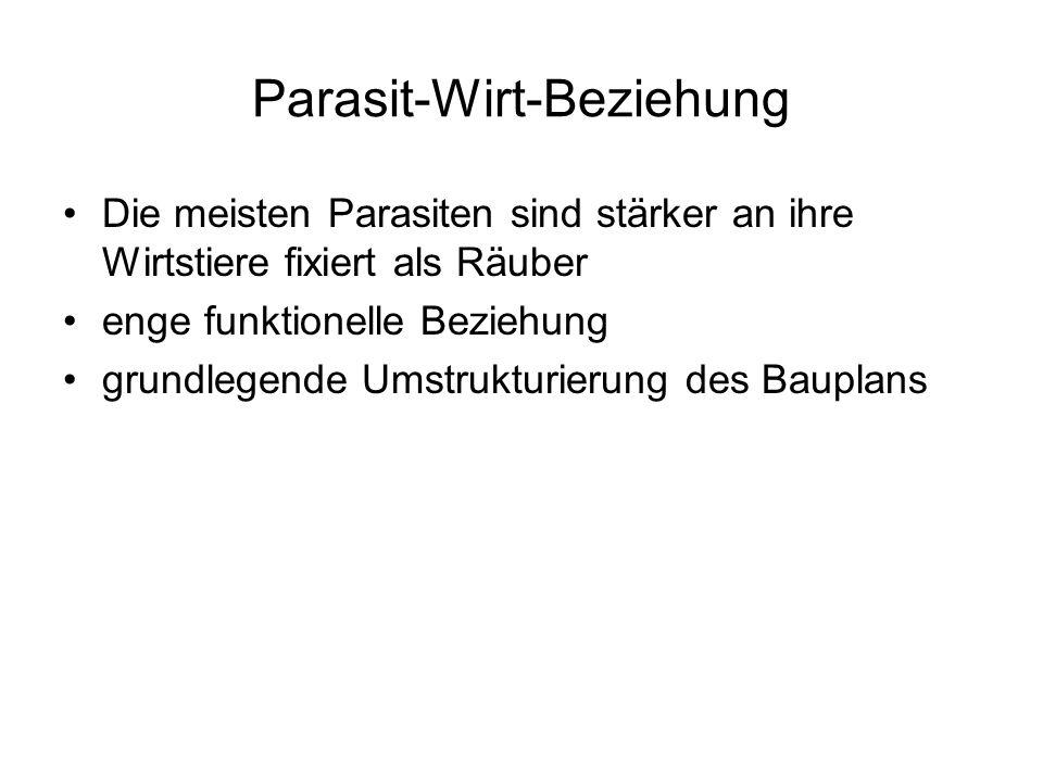 Parasit-Wirt-Beziehung