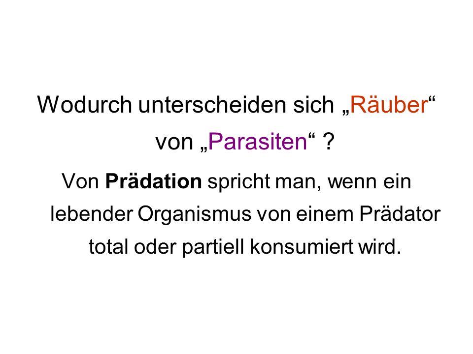 """Wodurch unterscheiden sich """"Räuber von """"Parasiten"""