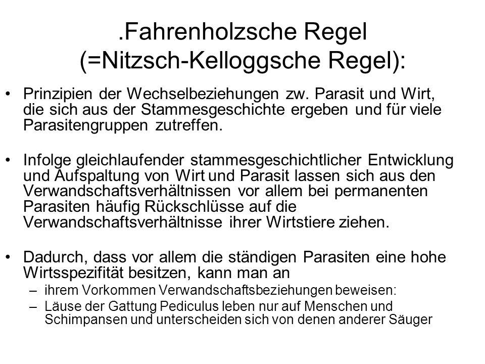 .Fahrenholzsche Regel (=Nitzsch-Kelloggsche Regel):