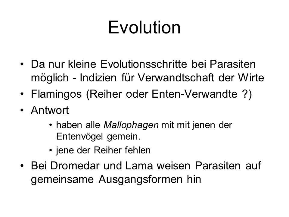 Evolution Da nur kleine Evolutionsschritte bei Parasiten möglich - Indizien für Verwandtschaft der Wirte.