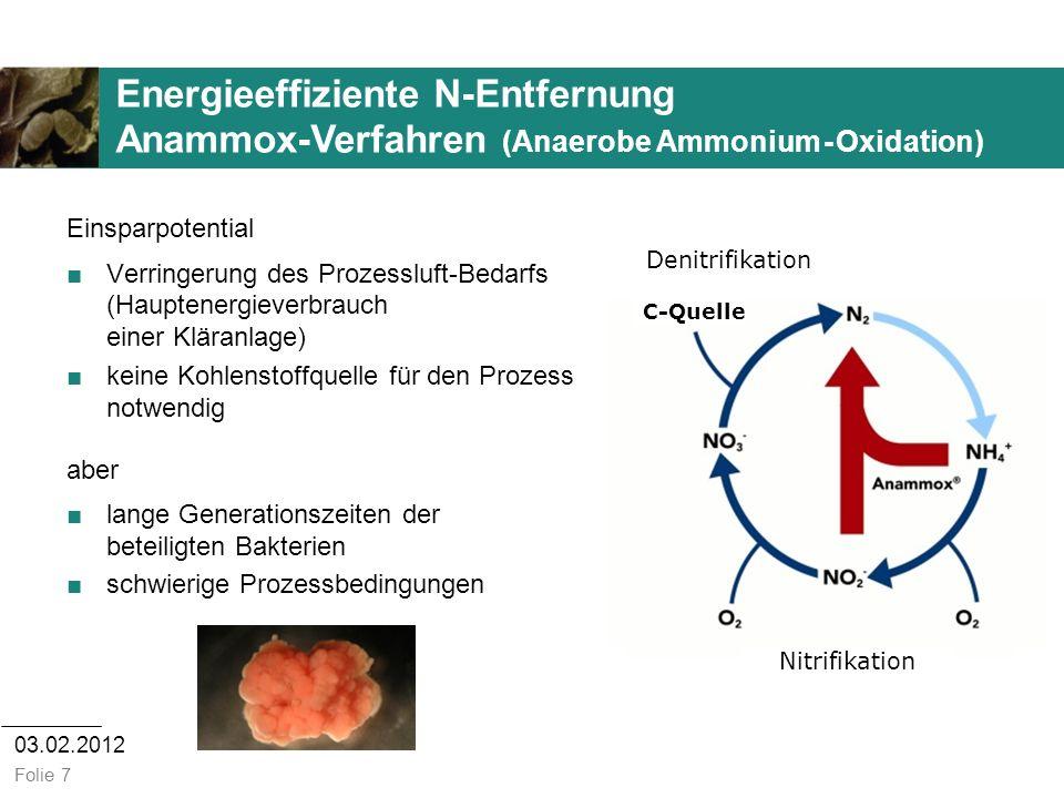 Energieeffiziente N-Entfernung Anammox-Verfahren (Anaerobe Ammonium - Oxidation)