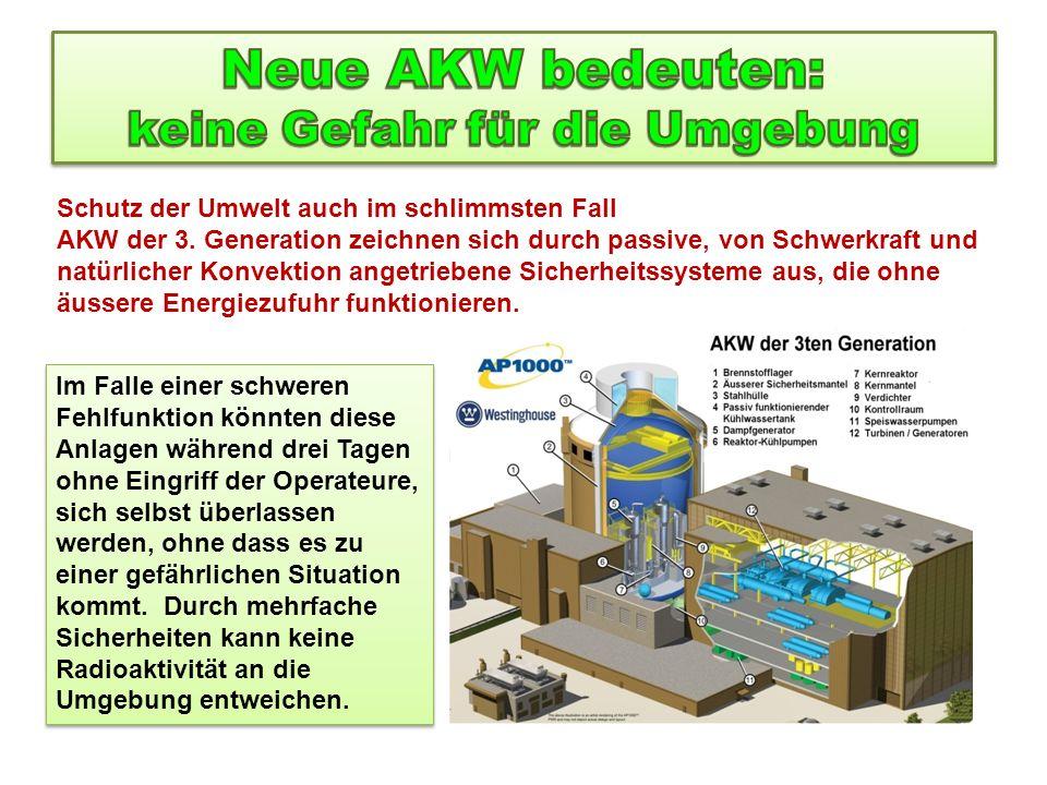 Neue AKW bedeuten: keine Gefahr für die Umgebung