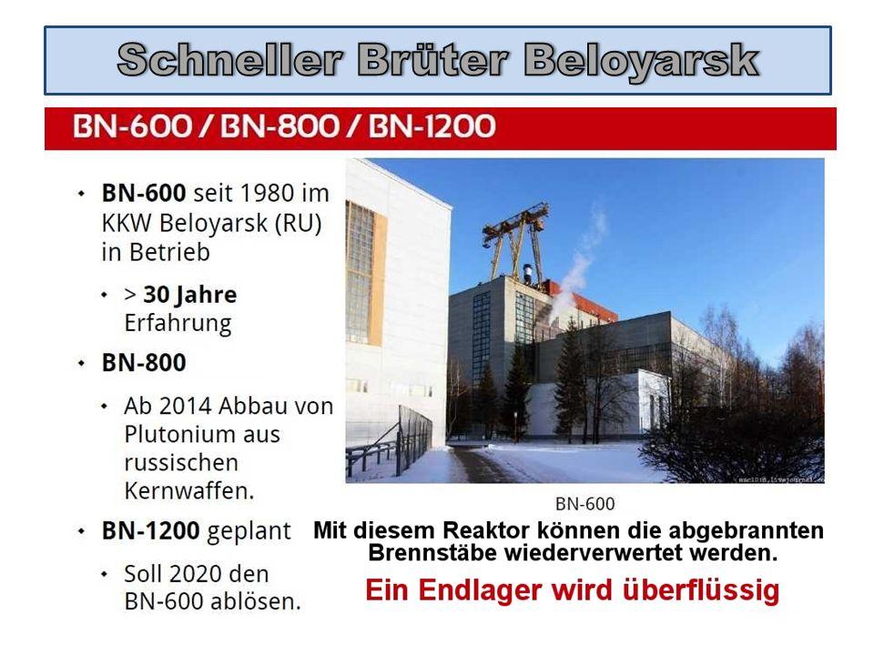 Schneller Brüter Beloyarsk