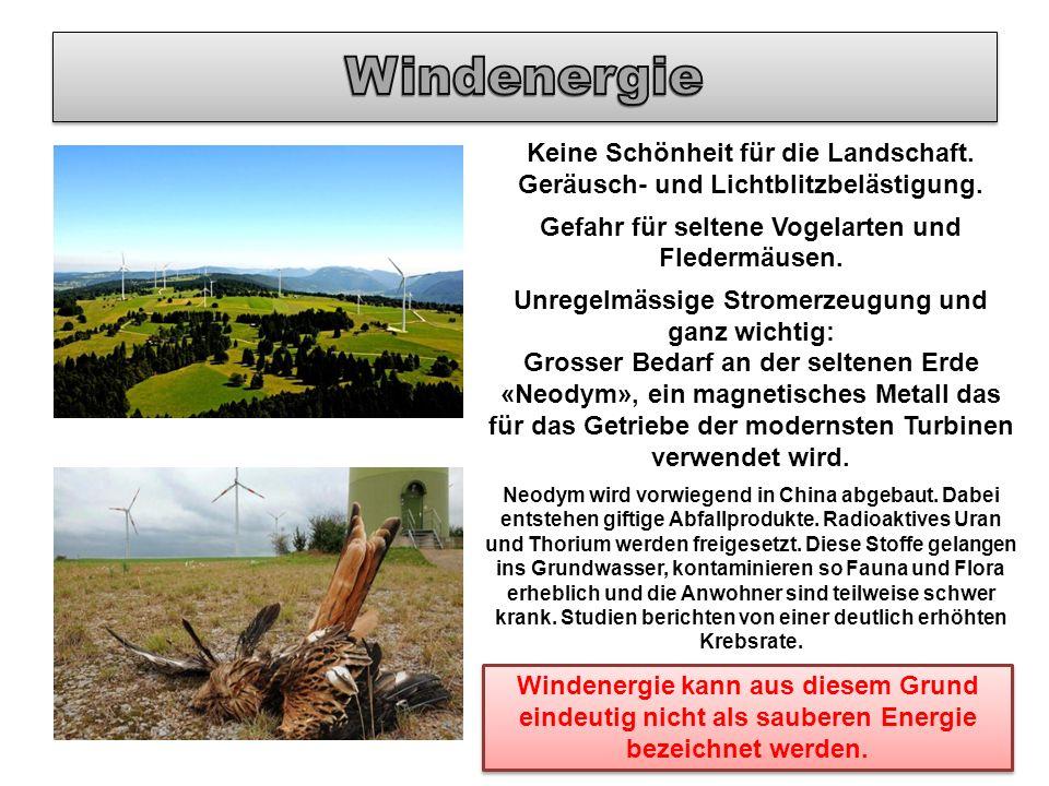 Windenergie Keine Schönheit für die Landschaft. Geräusch- und Lichtblitzbelästigung. Gefahr für seltene Vogelarten und Fledermäusen.