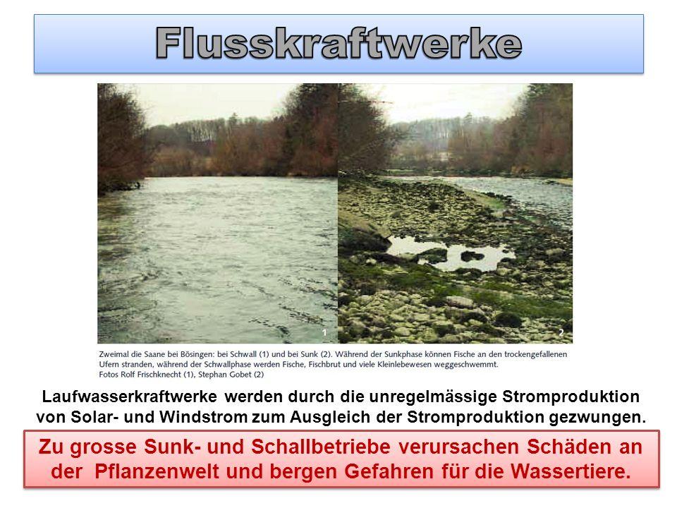 Flusskraftwerke
