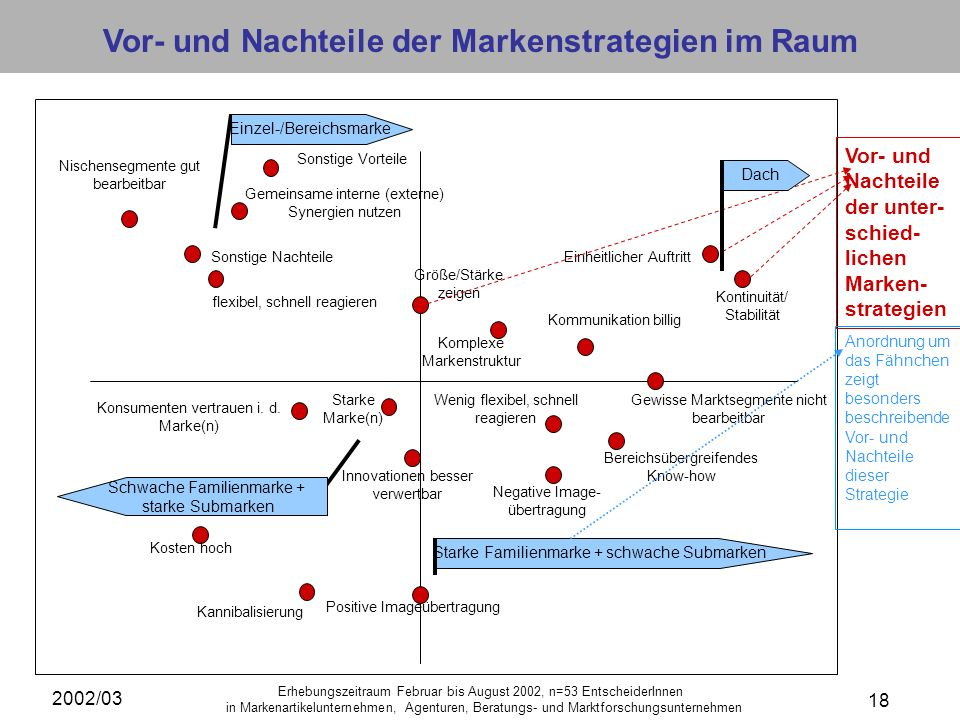 Vor- und Nachteile der Markenstrategien im Raum