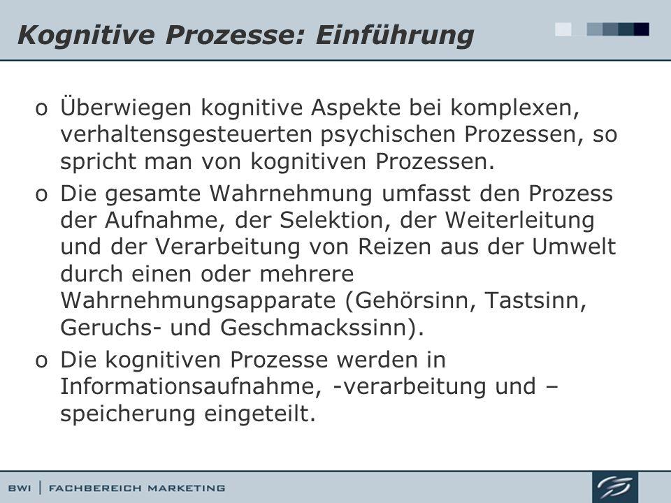 Kognitive Prozesse: Einführung