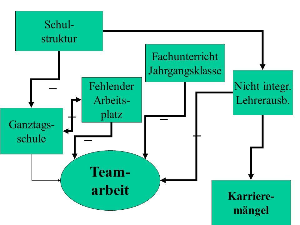 _ _ _ _ _ Team- arbeit Schul- struktur Fachunterricht Jahrgangsklasse