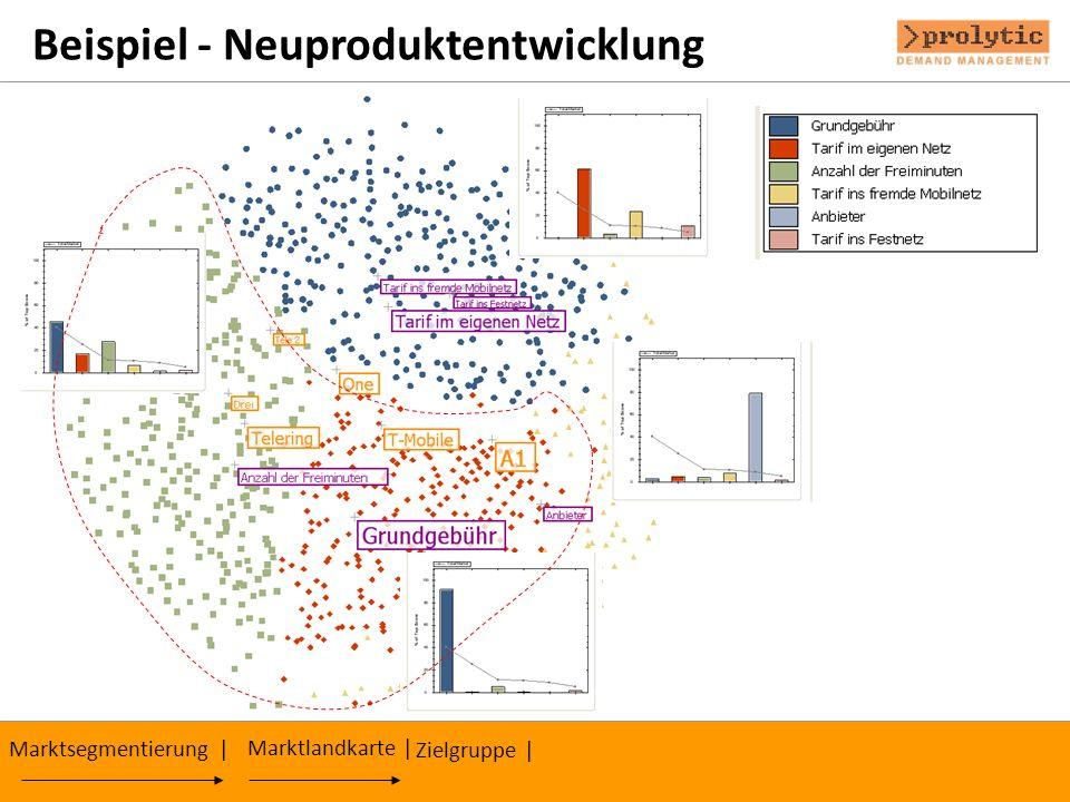 Beispiel - Neuproduktentwicklung