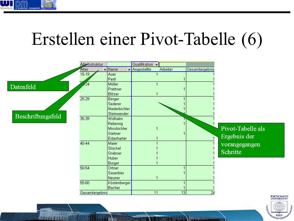 Erstellen einer Pivot-Tabelle (6)