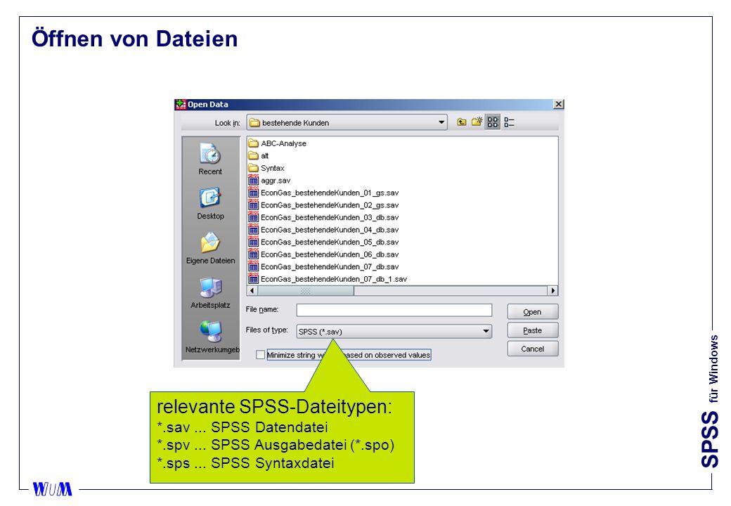 Öffnen von Dateien relevante SPSS-Dateitypen: