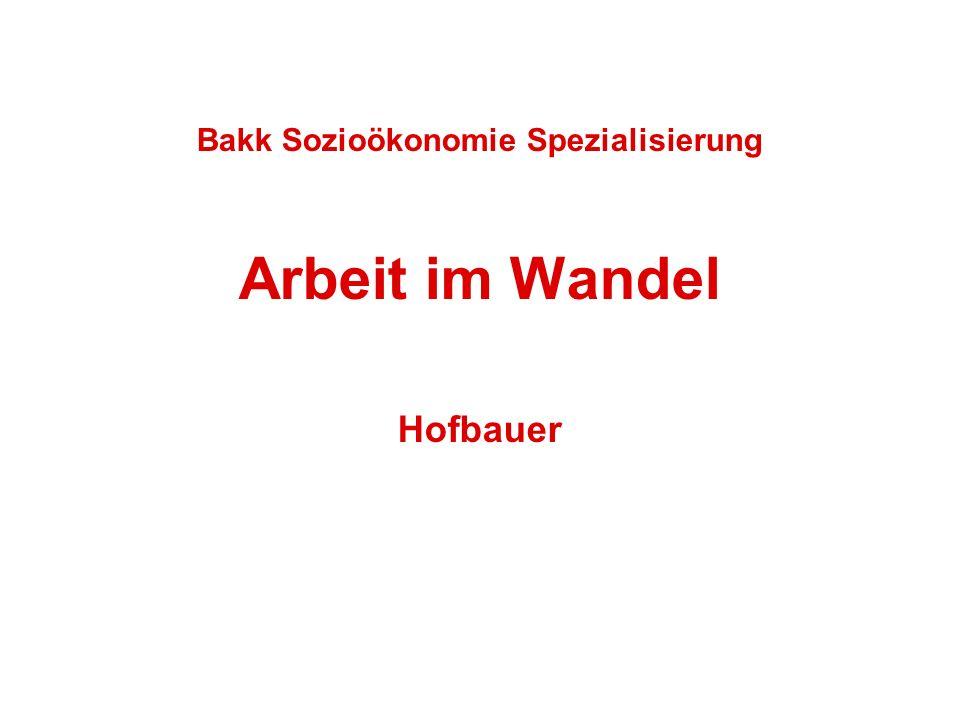 Arbeit im Wandel (Bakk Sozioökonomie) - Dr. Johanna Hofbauer