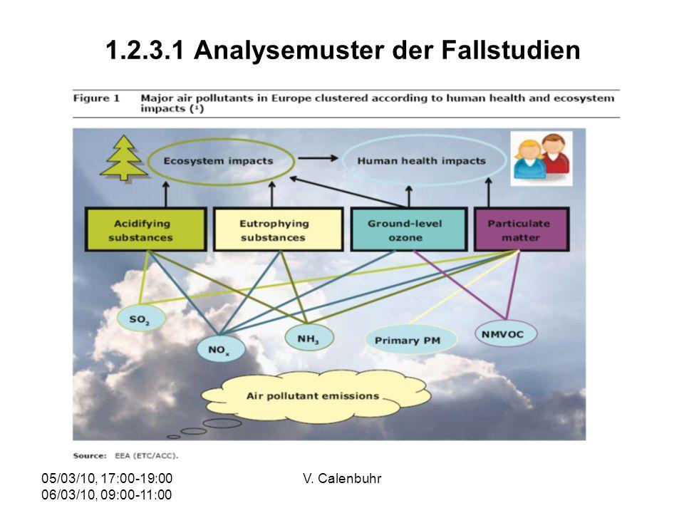 1.2.3.1 Analysemuster der Fallstudien