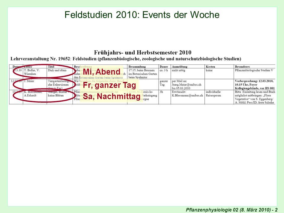 Feldstudien 2010: Events der Woche