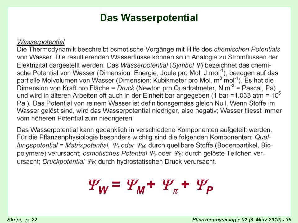 Wasserpotential Das Wasserpotential W = M +  + P Skript, p. 22