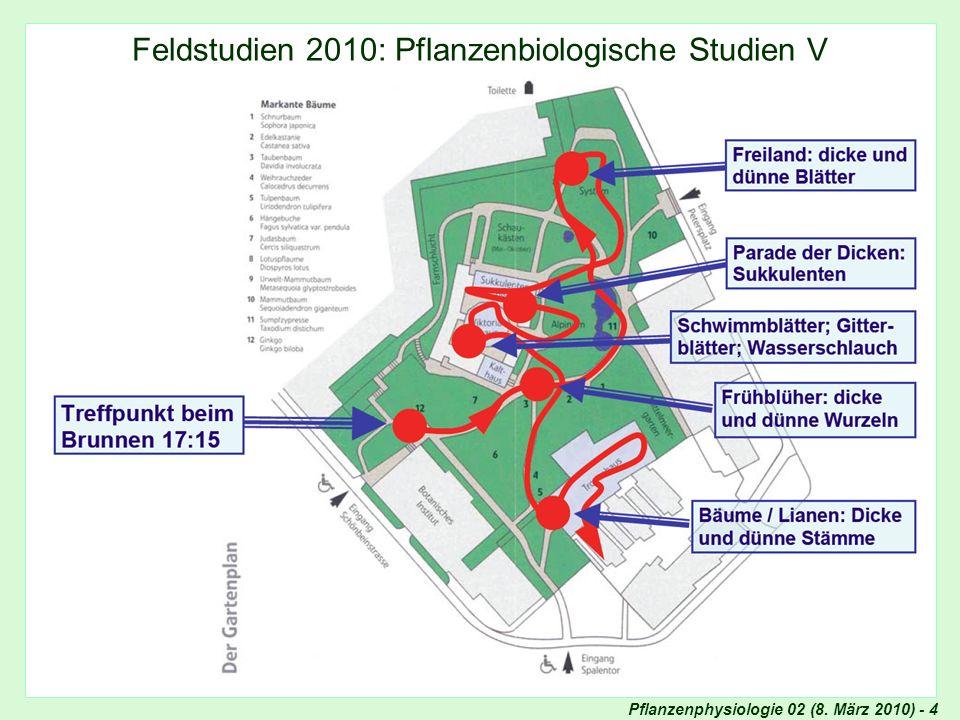 Feldstudien 2010: Pflanzenbiologische Studien V