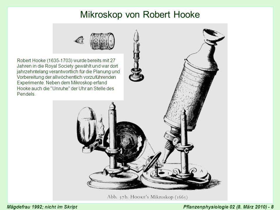 Mikroskop von Robert Hooke